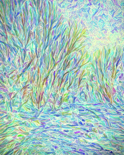 Digital Art - Sparkling Winter River And Trees - Boulder County Colorado by Joel Bruce Wallach