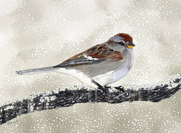 Painting - Sparrow In The Snow by Diane Chandler