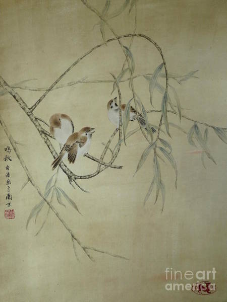 Morning Song Wall Art - Painting - Sparrow In Willow by Birgit Moldenhauer