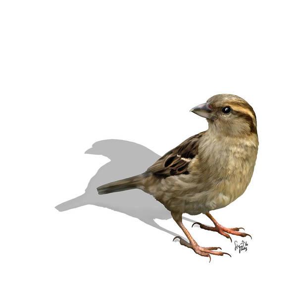Digital Art - Sparrow by Sigrid Van Dort