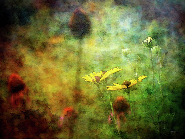 Photograph - Sparse 3882 Idp_2 by Steven Ward
