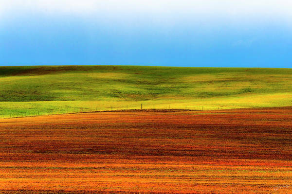 Photograph - Sparsely Cultivated  by Dee Browning