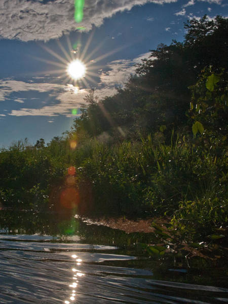 Photograph - Special Effect Lens Flare  by Matthew Bamberg