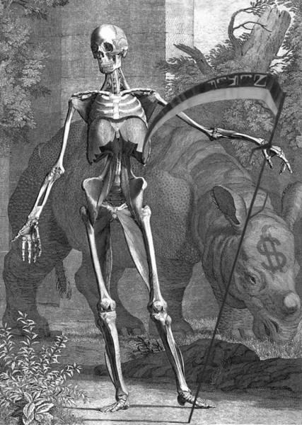 Photograph - Species At Deaths Door by Robert G Kernodle