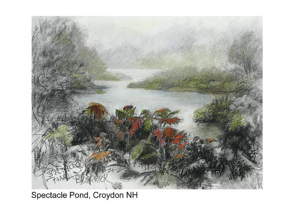 Pastel - Spectacle Pond by Betsy Derrick
