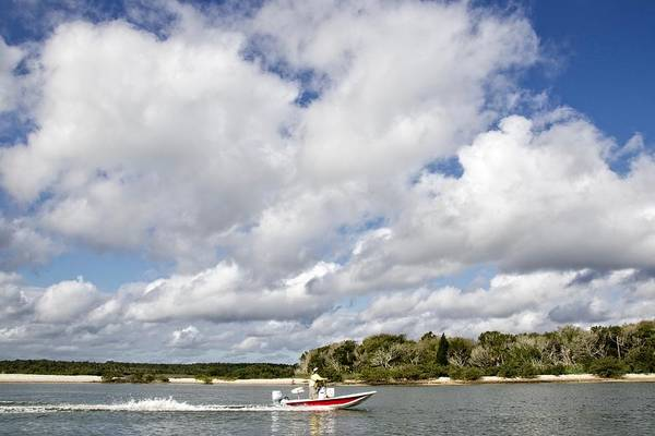 Photograph - Speedy Red Boat by Alice Gipson