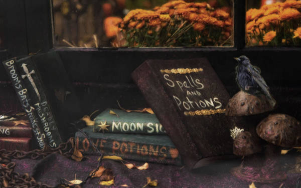 Photograph - Spells And Potions by Robin-Lee Vieira