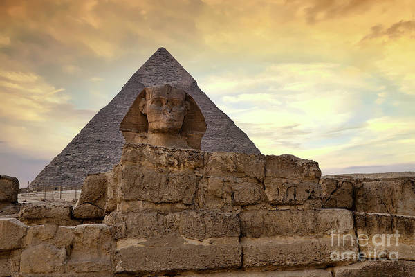 Wall Art - Photograph - Sphinx And Pyramid At Dusk by Jane Rix