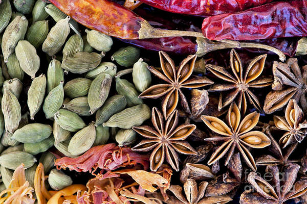 Wall Art - Photograph - Spice Collection  by Tim Gainey