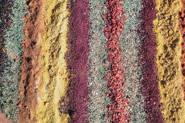 Herbs Photograph - Spices by Joana Kruse