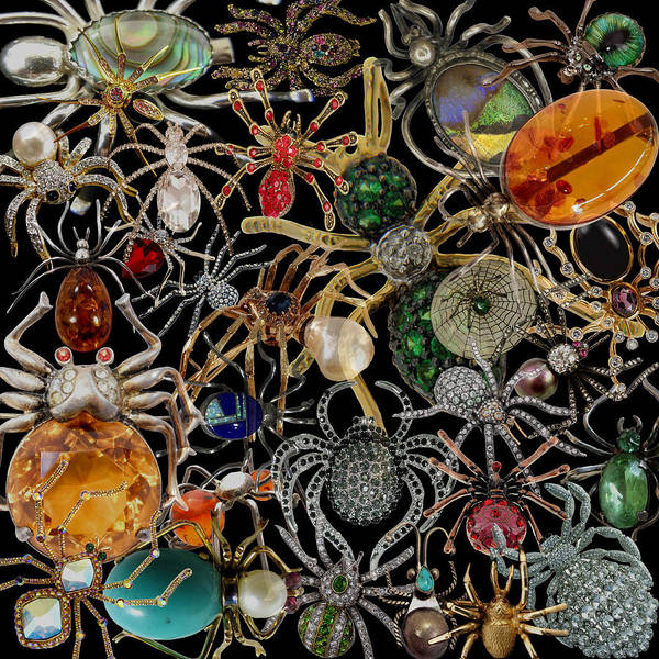 Photograph - Spider Brooches by Andrew Fare