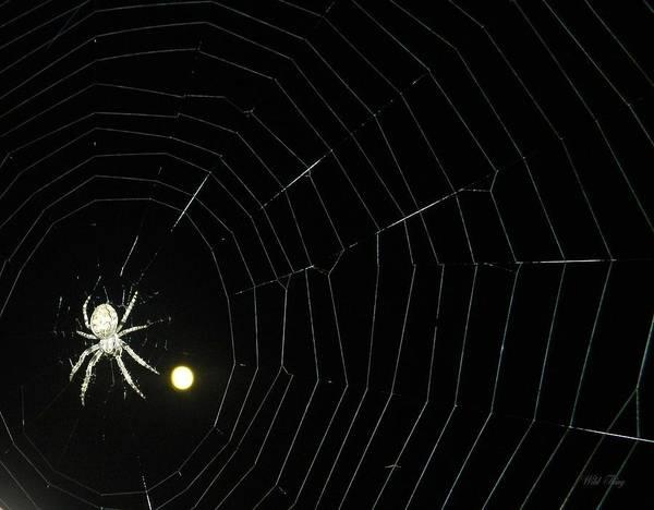 Spider Moon Art Print