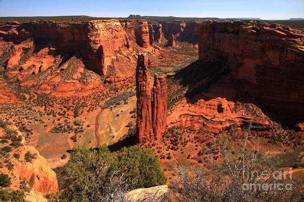 Photograph - Spider Rock Spires by Adam Jewell