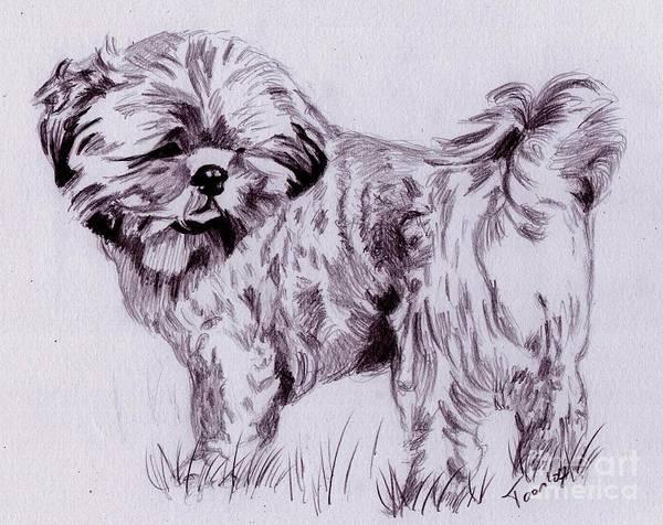 Drawing - Spike by Toon De Zwart
