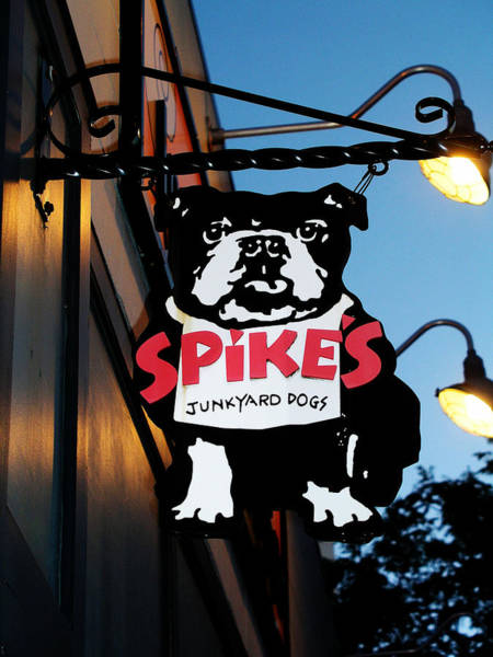 Photograph - Spike's by Mary Capriole