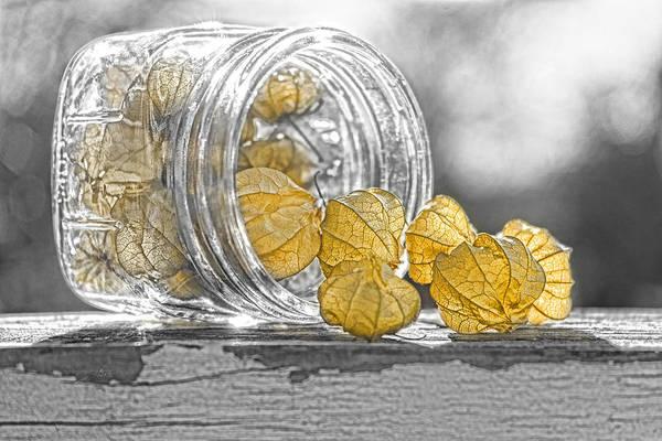 Photograph - Spilling Light by Sharon Popek