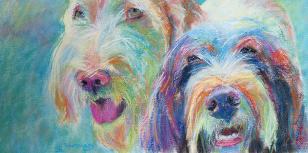 Wall Art - Pastel - Spinone Dogs The 60s by Sandy  Lindblad