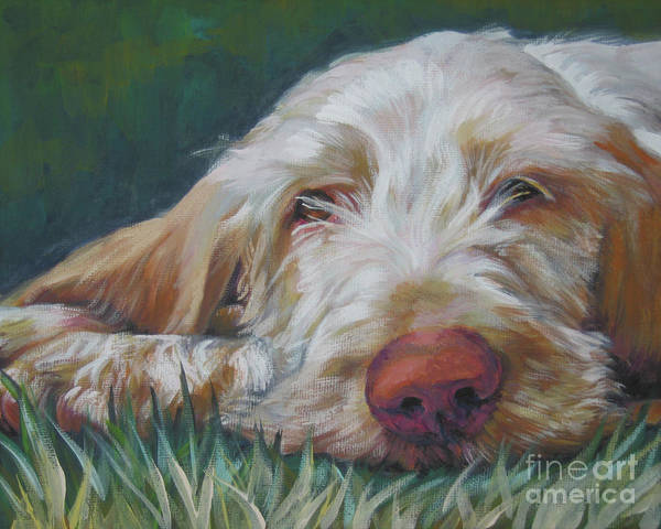 Wall Art - Painting - Spinone Italiano Orange by Lee Ann Shepard
