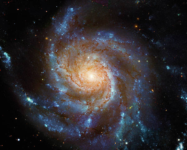 Photograph - Spiral Galaxy M101 by Paul W Faust - Impressions of Light