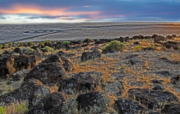 Photograph - Spiral Jetty by Scott Read