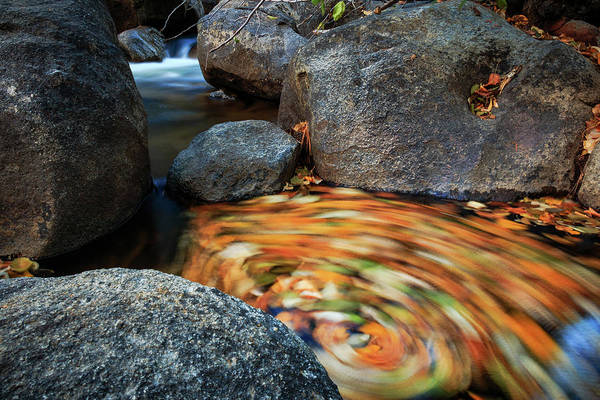 Lightroom Photograph - Spiral Of Autumn Essence by Mike Herron