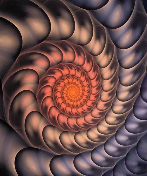 Digital Art - Spiral Shell by Anastasiya Malakhova