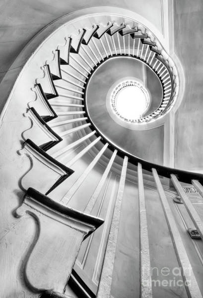 Black Photograph - Spiral Staircase Lowndes Grove  by Dustin K Ryan