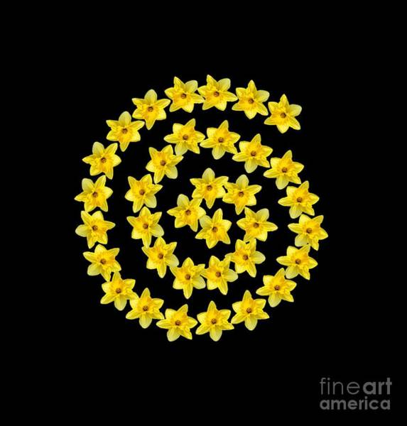 Photograph - Spiral Symbol by Rachel Hannah