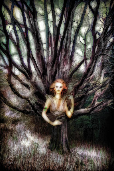 Digital Art - Spirit Of The Trees by Pennie McCracken