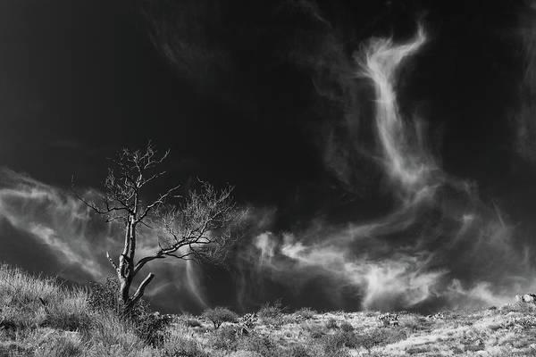Photograph - Spirit World by Rick Furmanek