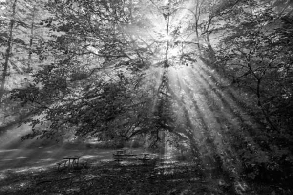 Photograph - Spiritual Picnic by Mark Kiver