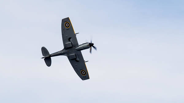 Photograph - Spitfire From Below Sunderland Air Show 2014 by Scott Lyons
