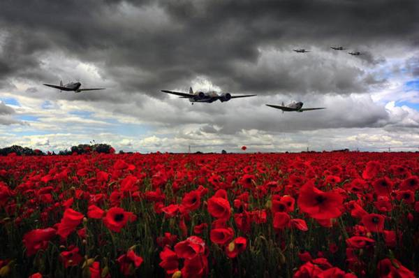 Flyby Photograph - Spitfires And Blenheim by Jason Green