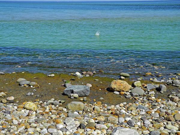 Photograph - Splash In The Blue Sea  by Lynda Lehmann