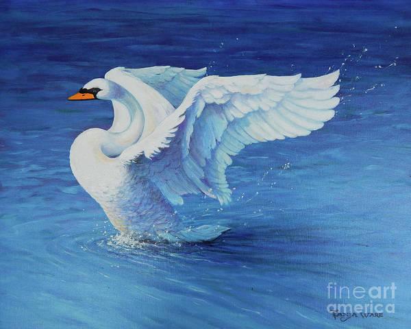 Trumpeter Swan Painting - Splashdown by Tanja Ware
