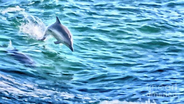 Mixed Media - Splashing Dolphin by David Millenheft