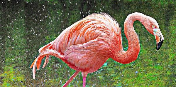 Photograph - Splashy Pink by Alice Gipson