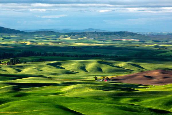 Wall Art - Photograph - Splendid Fields by Todd Klassy
