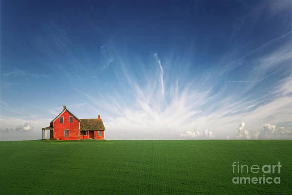 Home Field Photograph - Splendid Isolation by Evelina Kremsdorf
