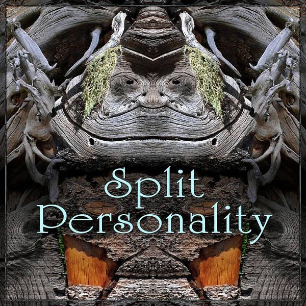 Digital Art - Split Personality by Becky Titus