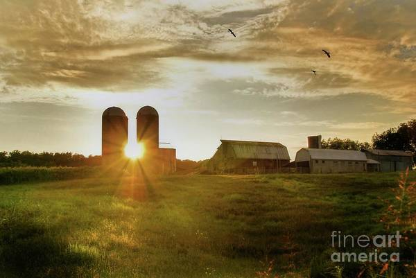 Corn Field Photograph - Split Silo Sunset by Benanne Stiens