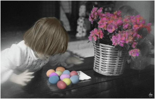 Photograph - Spoils Of The Egg Hunt by Wayne King