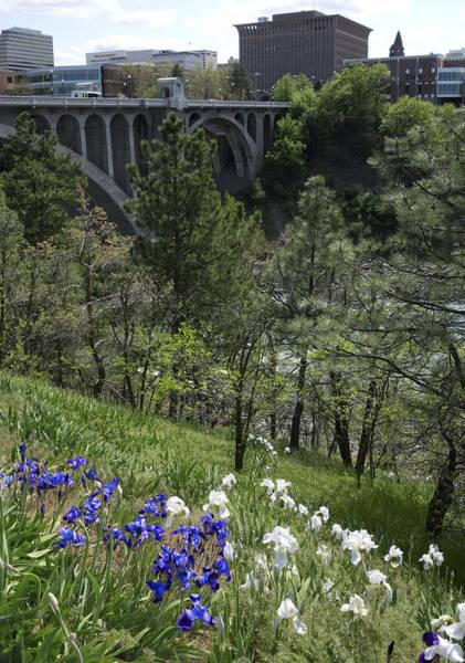 Centennial Bridge Photograph - Spokane Skyline From Centennial Trail by Daniel Hagerman