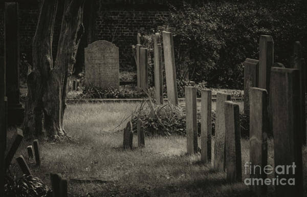 Photograph - Spooky Charleston Cemetery by Dale Powell