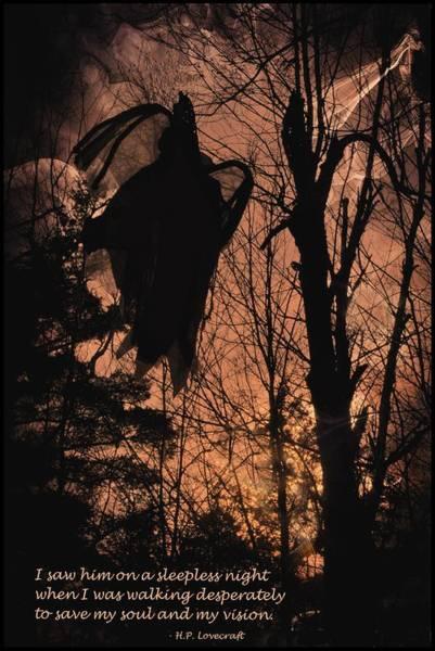 Photograph - Spooky Encounter by Phyllis Meinke