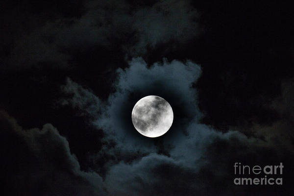 Photograph - Spooky Moon by Dale Powell