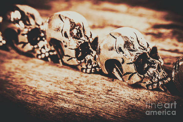 Human Head Photograph - Spooky Skeleton Craniums  by Jorgo Photography - Wall Art Gallery