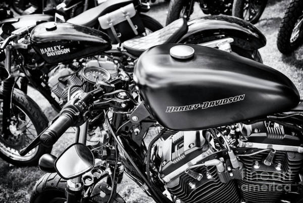 Harley Davidson Black And White Wall Art - Photograph - Sportsters by Tim Gainey