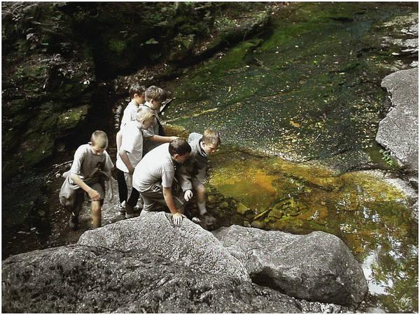 Photograph - Spotting Fish by Wayne King