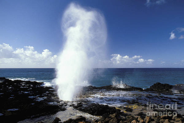 Wall Art - Photograph - Spouting Horn Blow Hole by Mary Van de Ven - Printscapes
